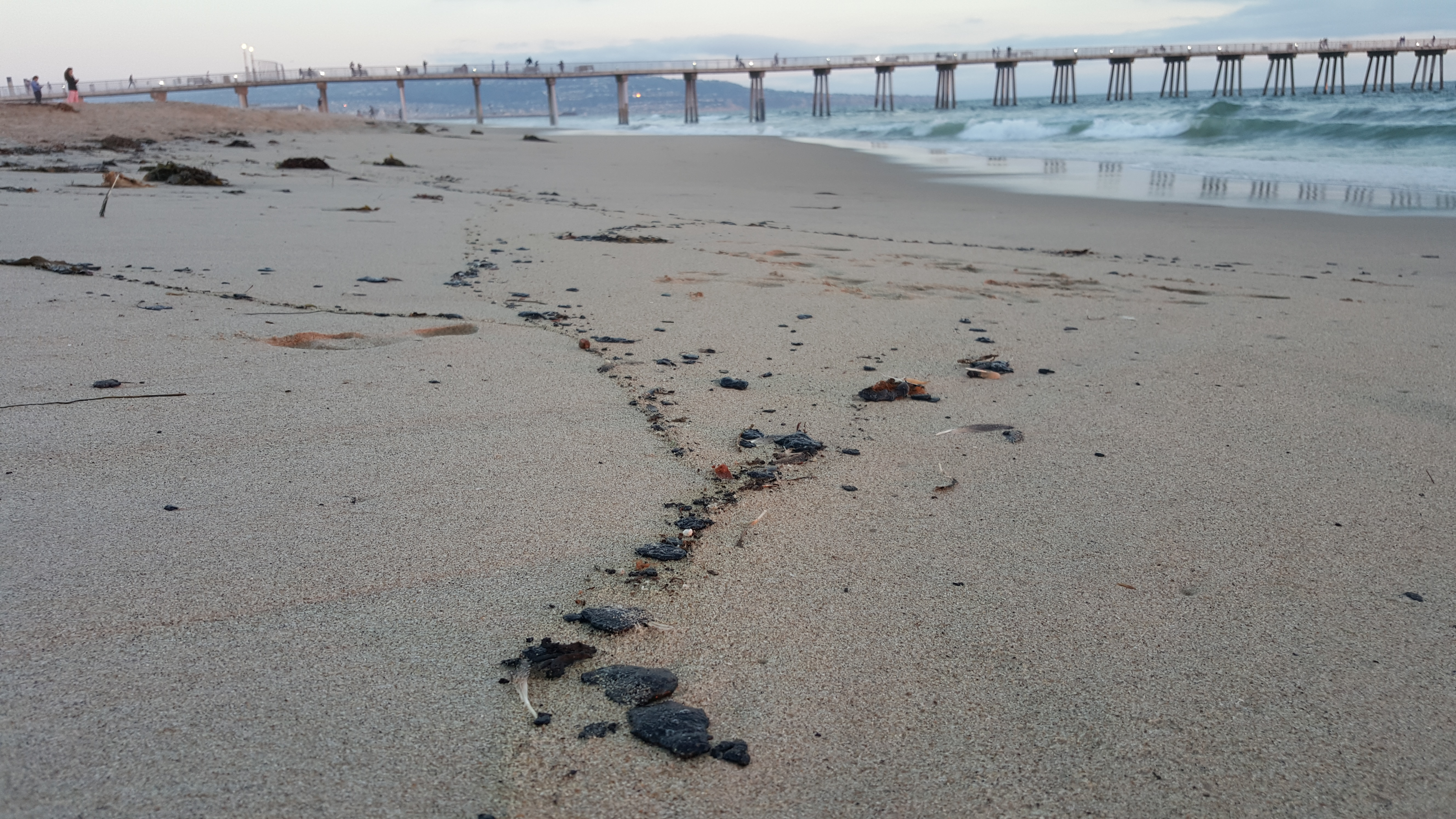 Substance washing up on shore identified as oil
