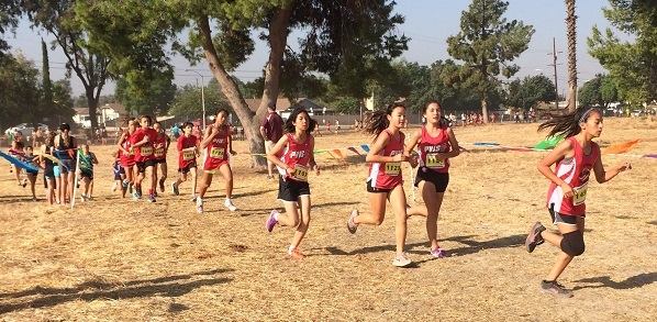 Boys, girls runners capture state cross country titles for PV Intermediate School